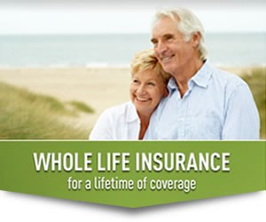 Whole Term Life Insurance Rate - Best Insurance Companies